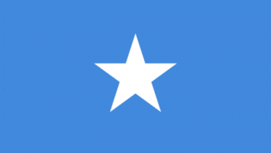 Eastern Africa Journalists Network EAJN flag of Somalia